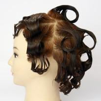 ヘアカラー毛 (乾燥毛)